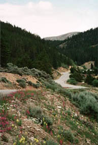 California Gultch, Colorado